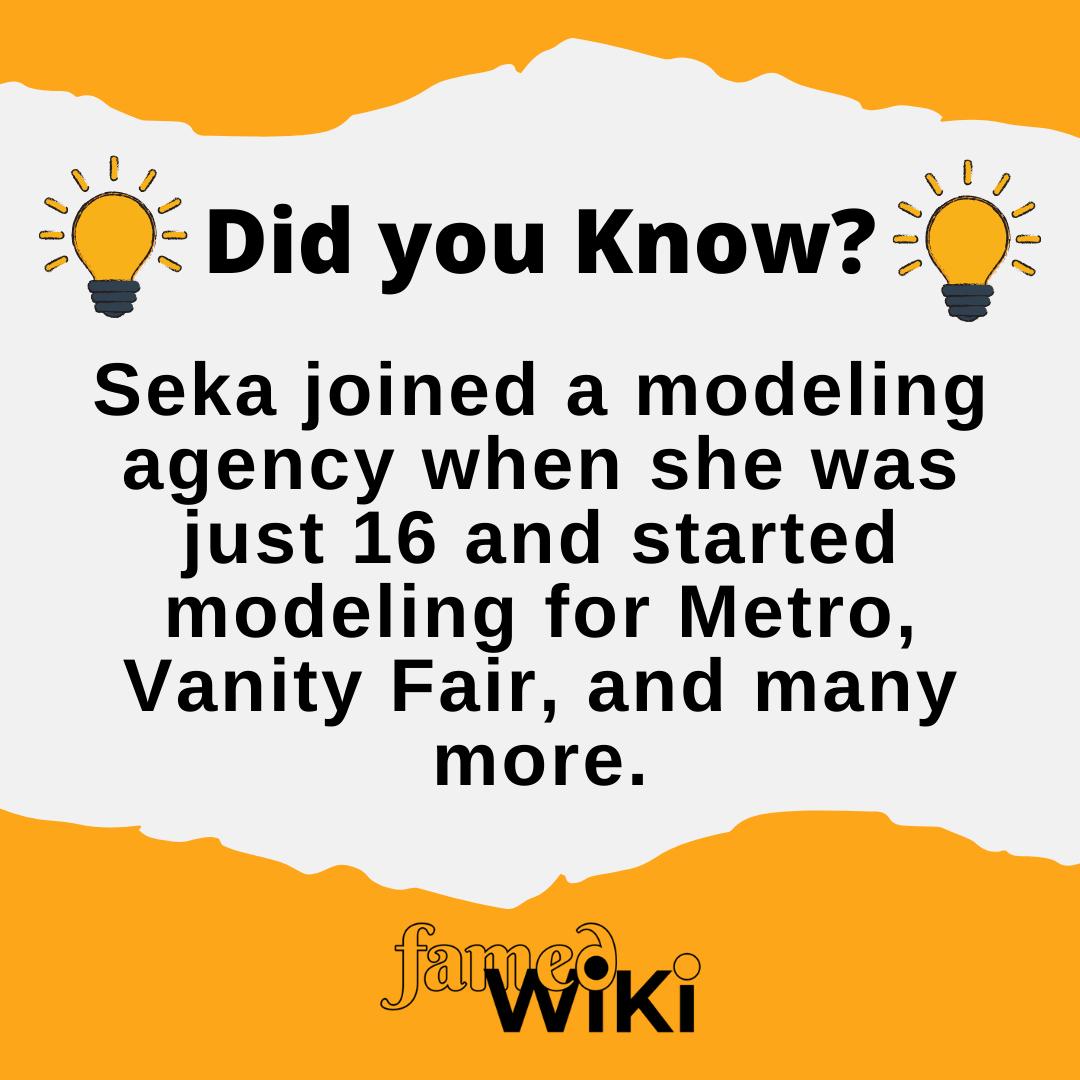 Seka Facts
