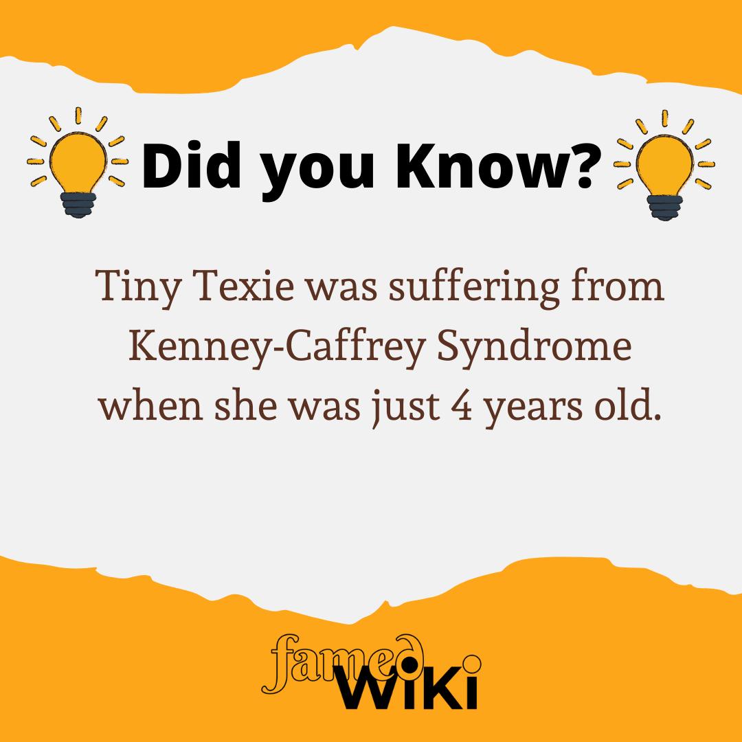 Tiny Texie Facts